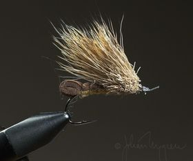 Streaking Caddis, foamback